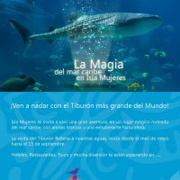 Whale Shark Isla Mujeres reservations