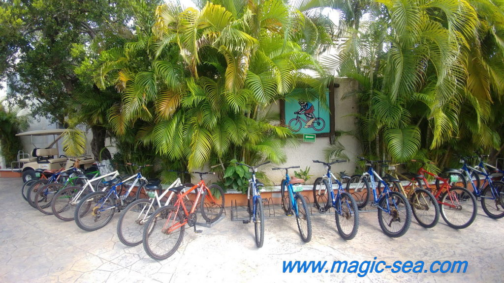 Bycicle at Beach Club Isla Mujeres